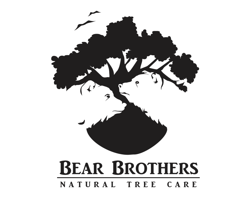 Bear Brothers Tree Care