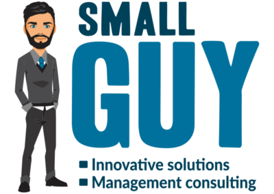 Small Guy Consulting
